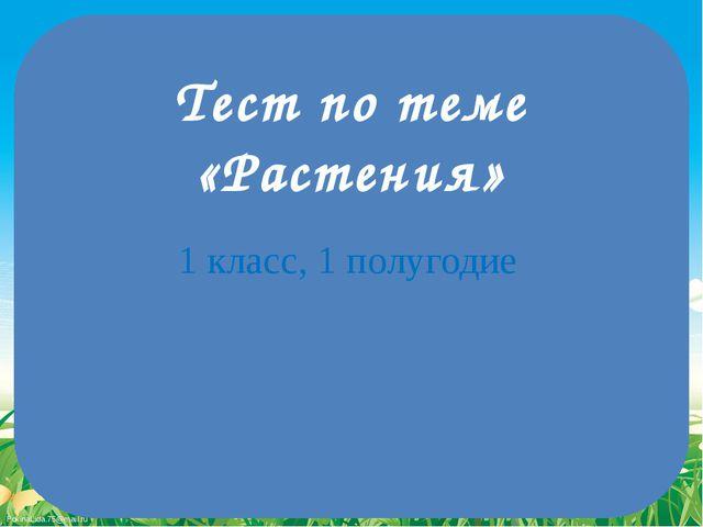 Тест по теме «Растения» 1 класс, 1 полугодие FokinaLida.75@mail.ru
