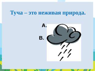 A. да B. НЕТ Туча – это неживая природа. FokinaLida.75@mail.ru