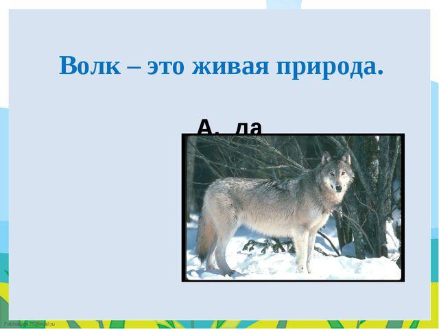 A. да B. НЕТ Волк – это живая природа. FokinaLida.75@mail.ru