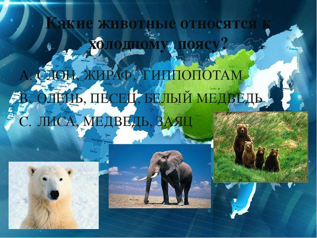Какие животные относятся к холодному поясу? СЛОН, ЖИРАФ, ГИППОПОТАМ ОЛЕНЬ, ПЕ...
