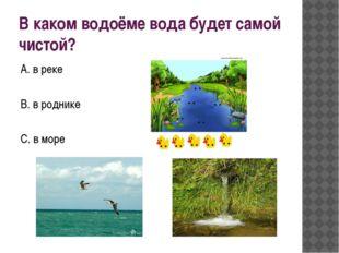 В каком водоёме вода будет самой чистой? А. в реке В. в роднике С. в море