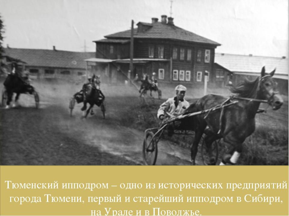 Тюменский ипподром – одно из исторических предприятий города Тюмени, первый и...