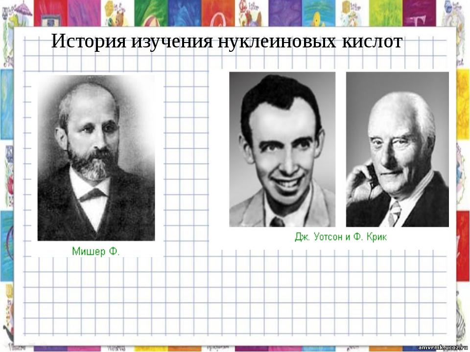 История изучения нуклеиновых кислот