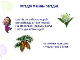 Цветёт он майскою порой, Его найдёшь в тени лесной: На стебельке, как бусы в