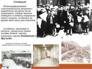 Селекция Фотографировать «окончательное решение» еврейского вопроса было зап