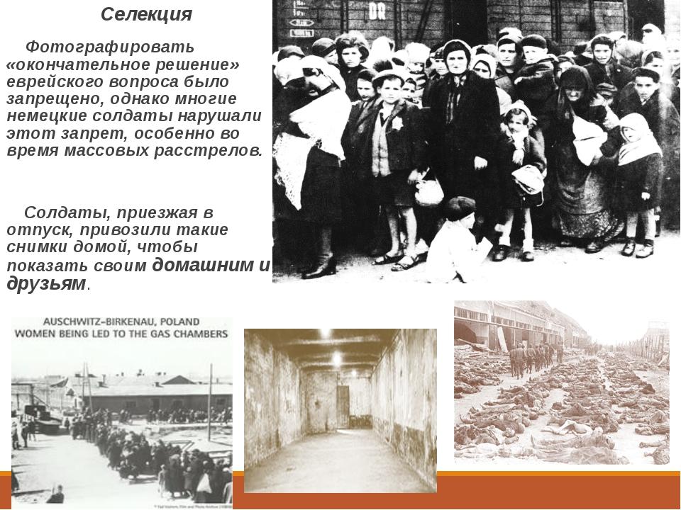 Селекция Фотографировать «окончательное решение» еврейского вопроса было зап...