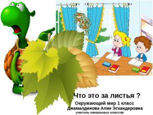 Что это за листья ? Окружающий мир 1 класс Джамалдинова Алие Эскандеровна учи