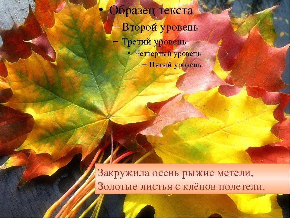 Закружила осень рыжие метели, Золотые листья с клёнов полетели.