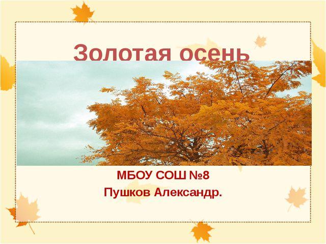 Золотая осень МБОУ СОШ №8 Пушков Александр.