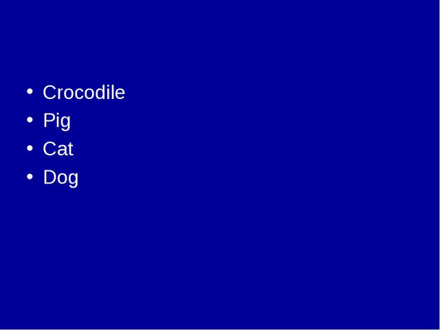 Crocodile Pig Cat Dog