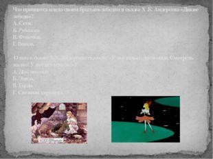 Что принцесса плела своим братьям-лебедям в сказкеХ .К. Андерсена «Дикие ле