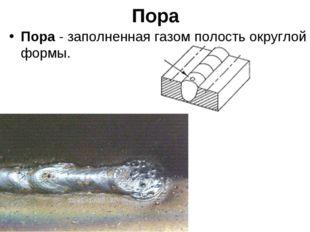 Пора Пора - заполненная газом полость округлой формы.