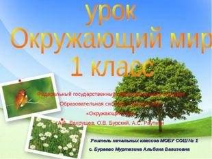 Учитель начальных классов МОБУ СОШ № 1 с. Бураево Муртазина Альбина Вагизовн