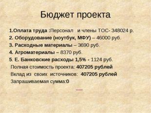 Бюджет проекта 1.Оплата труда :Персонал и члены ТОС- 348024 р. 2. Оборудовани
