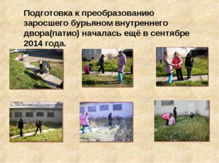 Подготовка к преобразованию заросшего бурьяном внутреннего двора(патио) начал