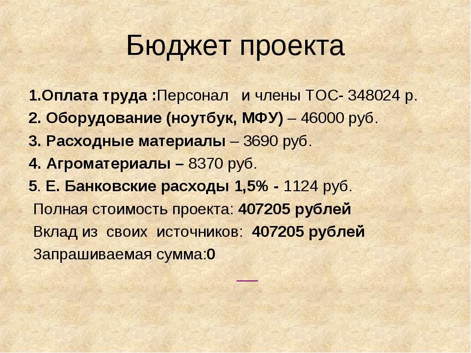Бюджет проекта 1.Оплата труда :Персонал и члены ТОС- 348024 р. 2. Оборудовани...