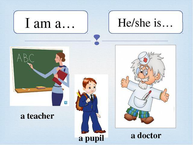I am a… He/she is… a teacher a pupil a doctor 