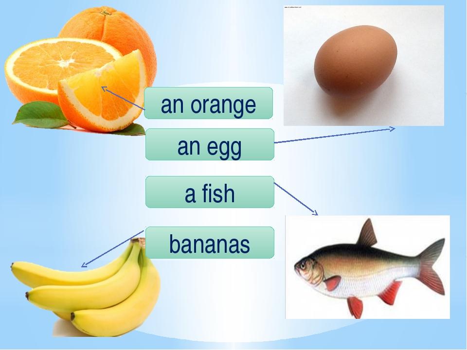 a fish bananas an egg an orange