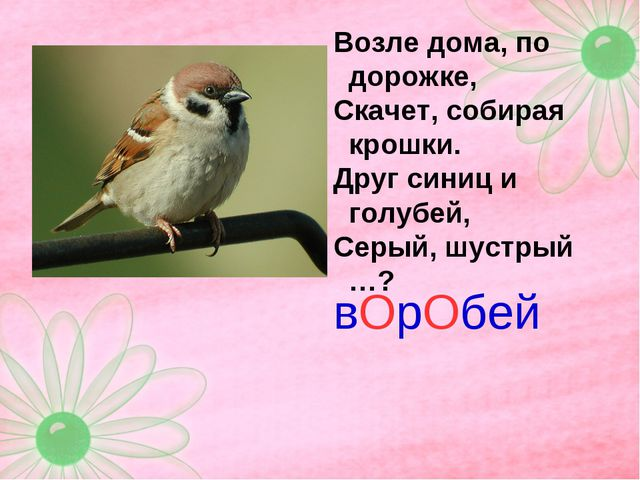 Возле дома, по дорожке, Скачет, собирая крошки. Друг синиц и голубей, Серый,...