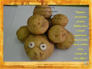 Чертик-маленькие рожки Найден был в кусте картошки. Он всю ночь там сладко сп