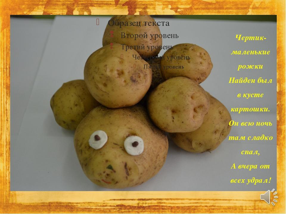 Чертик-маленькие рожки Найден был в кусте картошки. Он всю ночь там сладко сп...