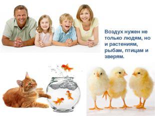 Воздух нужен не только людям, но и растениям, рыбам, птицам и зверям.