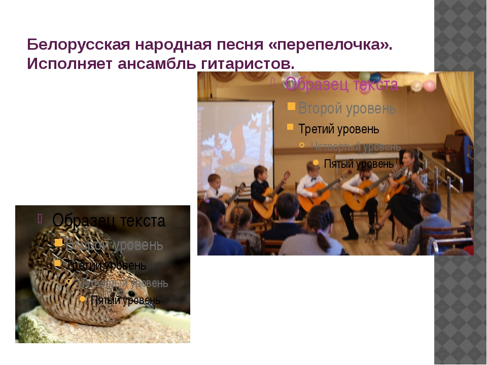 Белорусская народная песня «перепелочка». Исполняет ансамбль гитаристов.