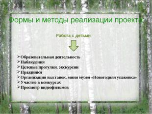 Образовательная деятельность Наблюдения Целевые прогулки, экскурсии Праздники