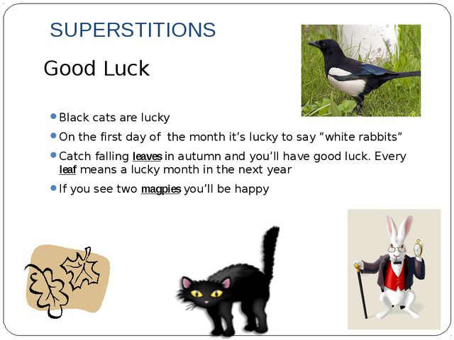 SUPERSTITIONS Black cats are lucky On the first day of the month it's lucky t...