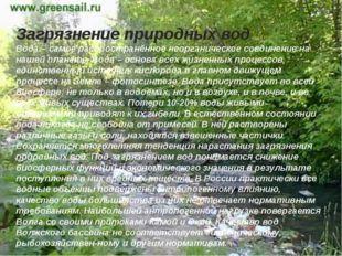 Загрязнение природных вод Вода – самое распространённое неорганическое соедин