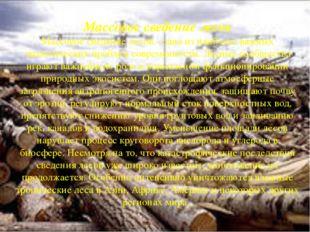 Массовое сведение лесов Массовое сведение лесов - одна из наиболее важных эк