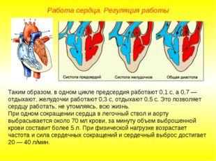 Работа сердца. Регуляция работы Таким образом, в одном цикле предсердия работ