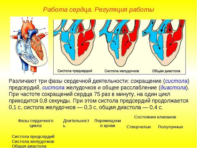 Работа сердца. Регуляция работы Различают три фазы сердечной деятельности: со...