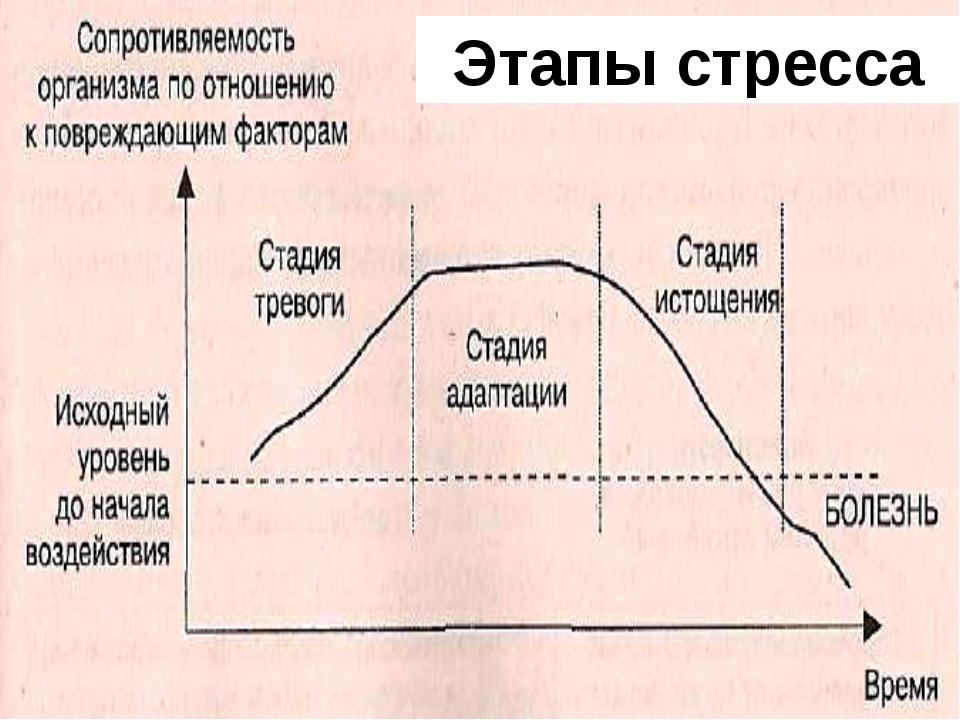 Этапы стресса