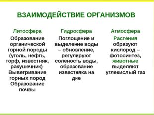 ВЗАИМОДЕЙСТВИЕ ОРГАНИЗМОВ Литосфера Гидросфера Атмосфера Образованиеорганичес
