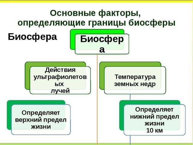Основные факторы, определяющие границы биосферы