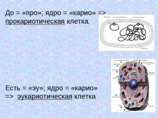 До = «про»; ядро = «карио» => прокариотическая клетка. Есть = «эу»; ядро = «к