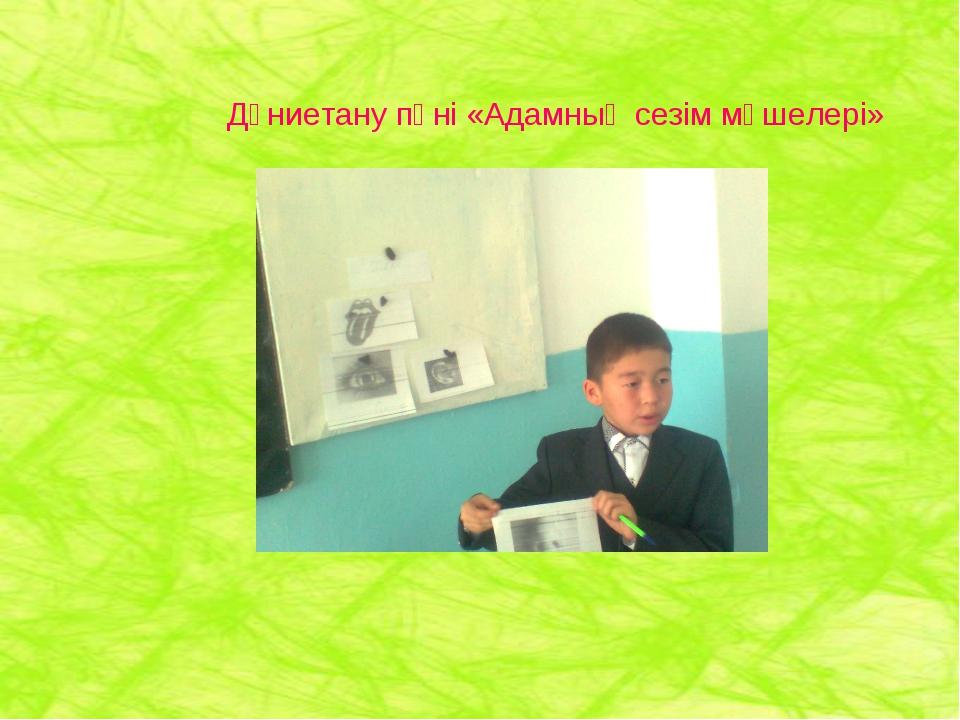 Дүниетану пәні «Адамның сезім мүшелері»