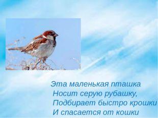 Эта маленькая пташка Носит серую рубашку, Подбирает быстро крошки И спасается