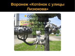 Воронеж «Котёнок с улицы Лизюкова»