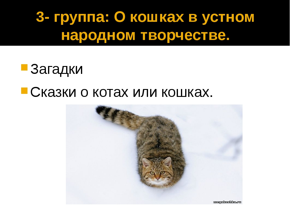 3- группа: О кошках в устном народном творчестве. Загадки Сказки о котах или...