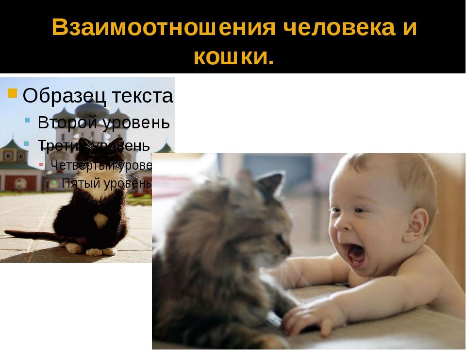 год отношение человека и кошки осуществляется