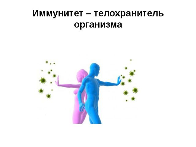 Иммунитет – телохранитель организма