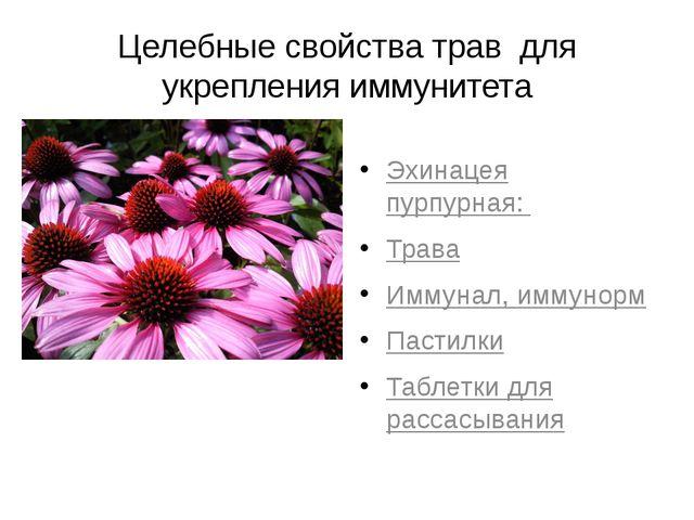 Целебные свойства трав для укрепления иммунитета Эхинацея пурпурная: Трава Им...