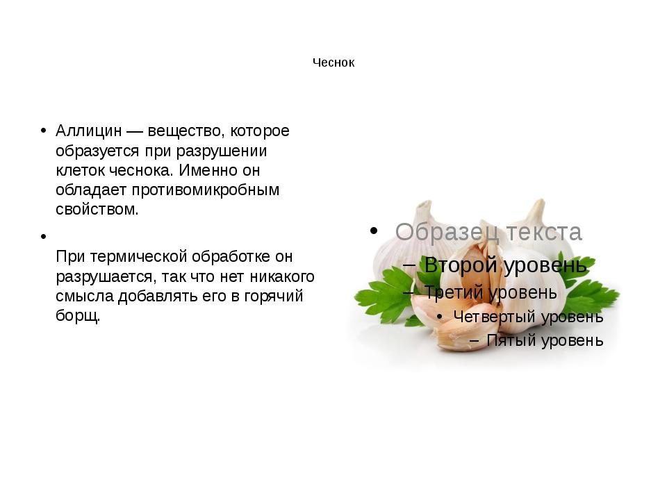 Чеснок Аллицин — вещество, которое образуется при разрушении клеток чеснока....