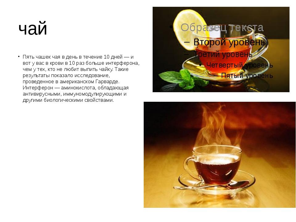 чай Пять чашек чая в день в течение 10 дней — и вот у вас в крови в 10 раз бо...