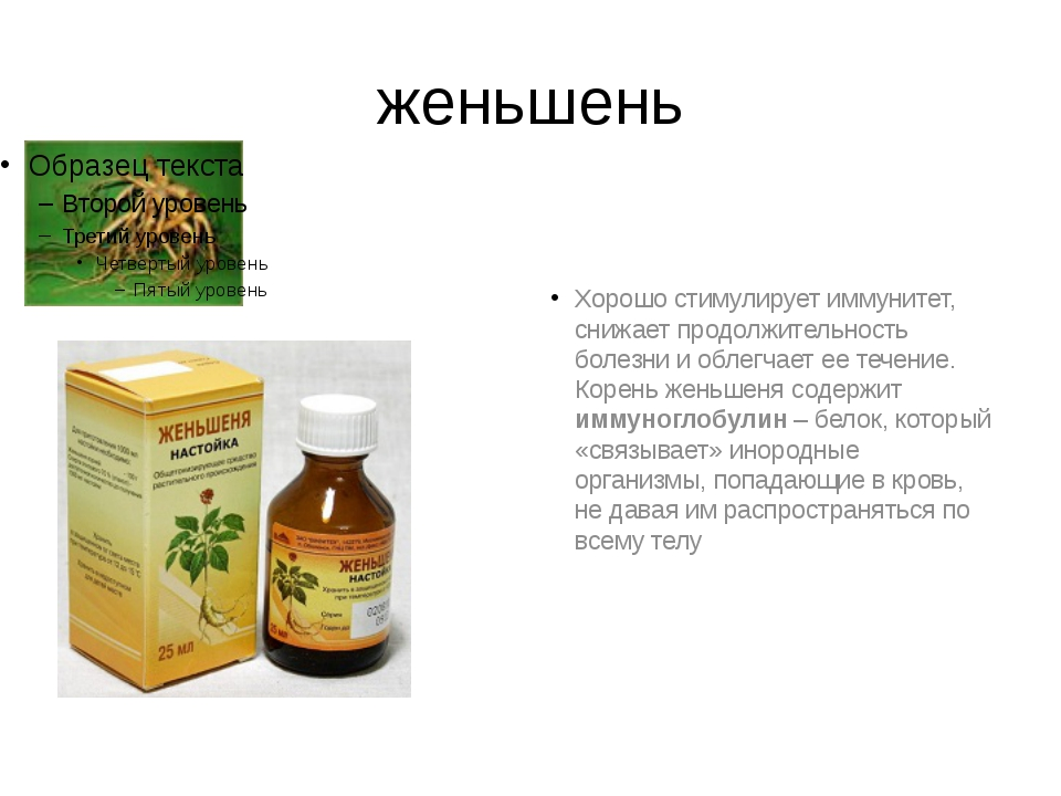 женьшень Хорошо стимулирует иммунитет, снижает продолжительность болезни и об...