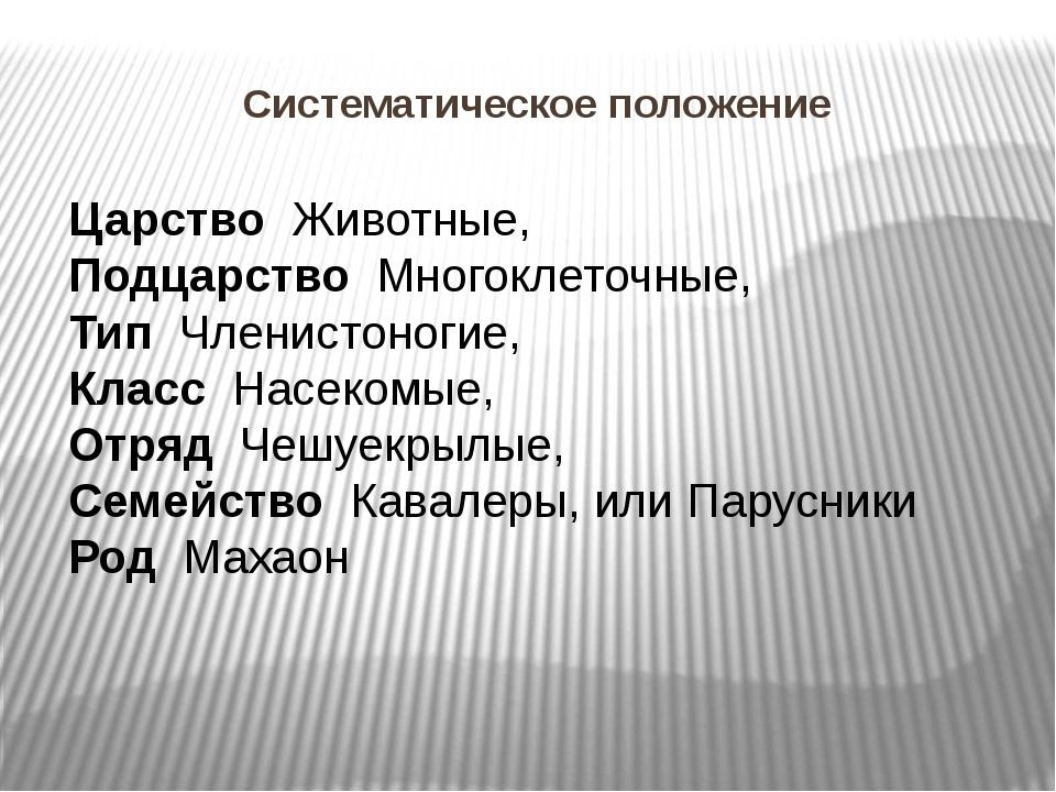 Систематическое положение Царство Животные, Подцарство Многоклеточные, Тип Чл...