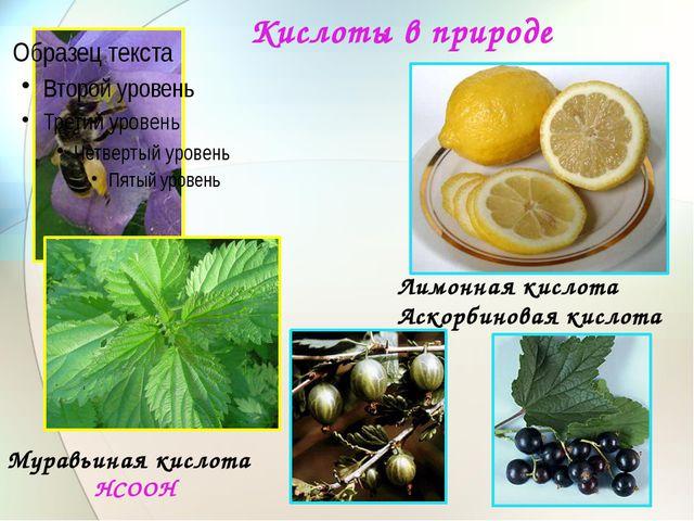 Кислоты в природе Муравьиная кислота НСООН Лимонная кислота Аскорбиновая кисл...