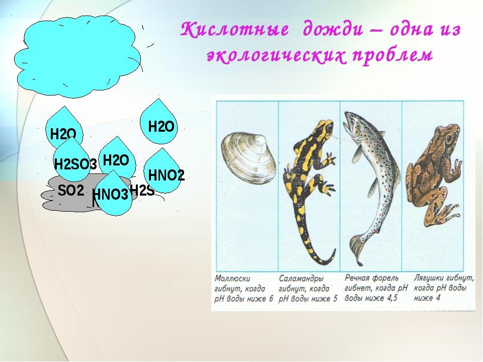 Кислотные дожди – одна из экологических проблем Н2О Н2О Н2О NО2 SО2 Н2S Н2SО3...